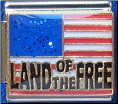 Land of the FREE -  Glitter USA Flag