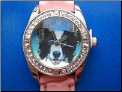 Border Collie Dog Watch   Pink Band