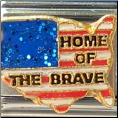 Home of the BRAVE  - USA