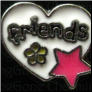 Friends White Heart Pink Star  Floating Locket charm