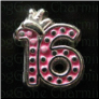 Birthday 16 Crown  Alloy  Floating Locket charm
