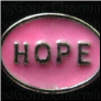 Hope Pink Oval   Alloy  Floating Locket charm