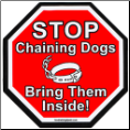 Stop Chaining Dogs Magnet