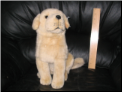 Yellow Lab Dog Stuffed Animal