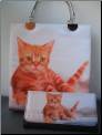 Orange Tabby Cat Purse