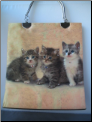 Three Kittens Purse