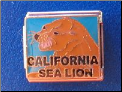California Sea Lion 9 mm Italian charm