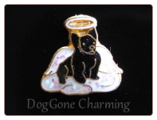 Shipperke Angel Dog BLK Floating Locket Charm