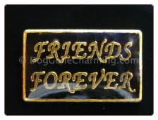 Friends Forever  Floating Locket Charm