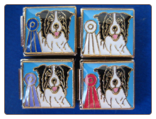 Border Collie  Italian Charm Winner Ribbons