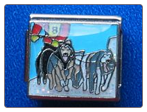 Sled dogs   glitter snow